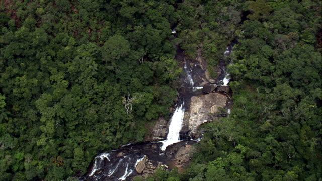 cachoeira dos macacos-luftaufnahme-minas gerais, aiuruoca, brasilien - tier rücken stock-videos und b-roll-filmmaterial