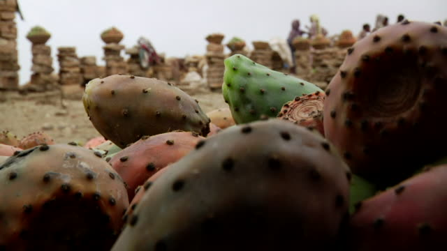 Cactus fruit and stone collumns on the background