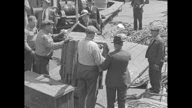 cage crates lifted with rope as writer and animal collector frank buck stands nearby and straightens crate / men on dock along with buck move crate... - herunterlassen stock-videos und b-roll-filmmaterial
