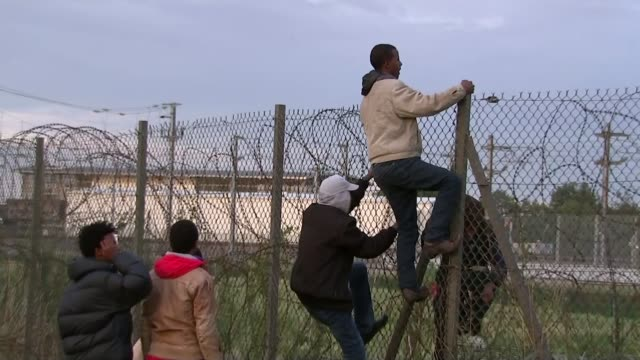 vidéos et rushes de david cameron criticised for 'swarm' comment france calais ext group of migrants climbing security fence surrounding channel tunnel entrance large... - clôture