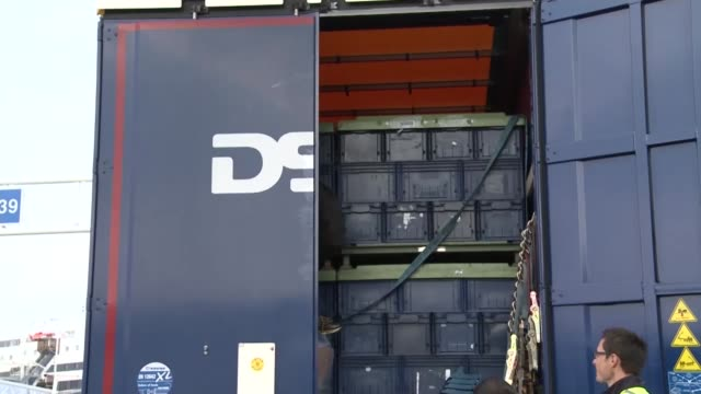 calais migrant crisis / david cameron pledges to tighten security france calais ext border force officer climbing up back of lorry on ladder border... - calais stock videos and b-roll footage