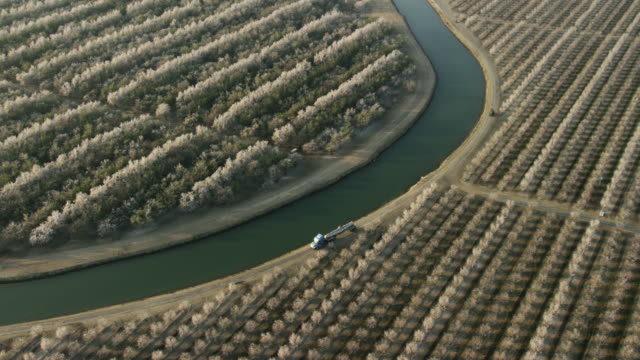 usa, california: almond trees around water canal - canal stock videos & royalty-free footage