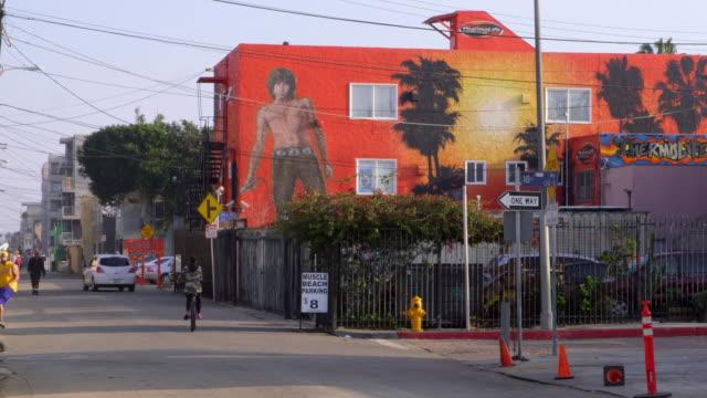 california beaches - 壁画点の映像素材/bロール