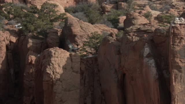 california condor gliding in for landing on perch - california condor stock videos and b-roll footage