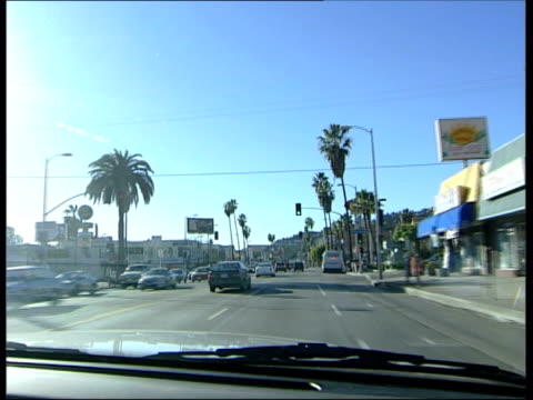 california: los angeles: hollywood: ext palm trees lining road track following seq has music 'hollywood' by madonna overlaid tracking seq road seen... - jack nicholson stock videos & royalty-free footage