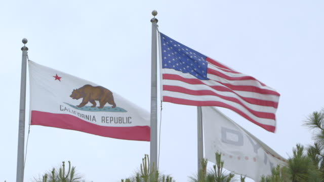 california republic and american flag fly side by side - pole stock videos & royalty-free footage