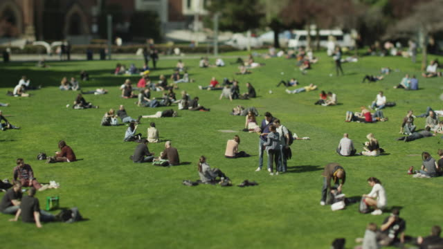 usa, california, san francisco, people relaxing on lawn - lying down stock videos & royalty-free footage