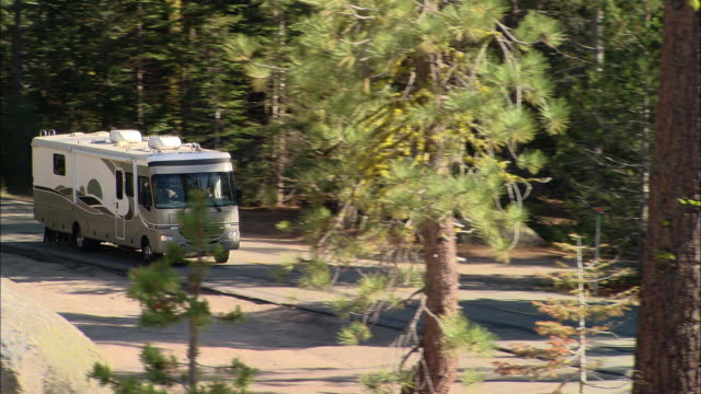 ha, ms, ts, usa, california, shaver lake, motor home traveling through forest - camper van stock videos & royalty-free footage