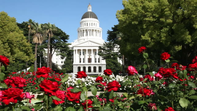 vidéos et rushes de le state capitol en californie - capitales internationales