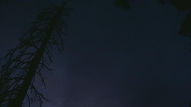 vidéos et rushes de california, yosemitelandscape at sunset - membres du corps humain
