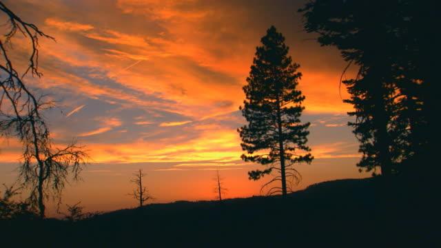 vidéos et rushes de california, yosemitesunset over mountain - membres du corps humain