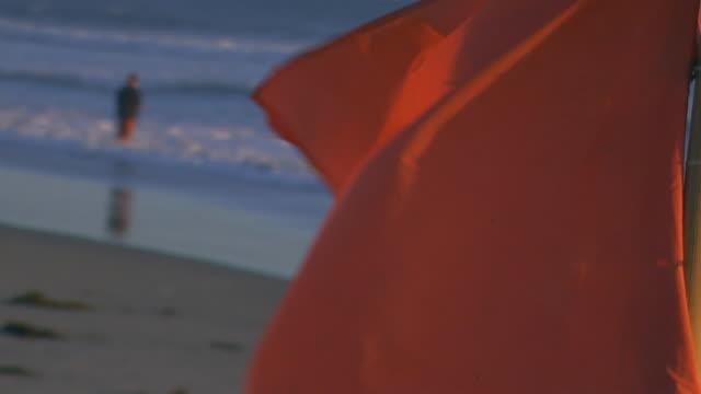 stockvideo's en b-roll-footage met californiaflag flying near ocean - onbekend geslacht