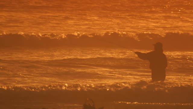 californiaman fishing in ocean - norra stilla havet bildbanksvideor och videomaterial från bakom kulisserna