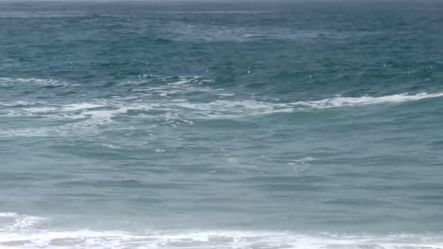 vídeos y material grabado en eventos de stock de california's often sun-soaked laguna beach is known as the birthplace of http://www.visitlagunabeach.com/things-to-do/outdoors/skimboarding/... - laguna beach california
