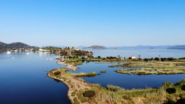 calis beach bird of paradise. aerial video. - dalyan stock videos and b-roll footage