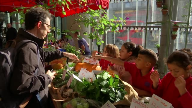 call for gardening skills to be included in national curriculum england london borough market ext vairous of primary schoolchildren at stall selling... - vegetable stock videos & royalty-free footage