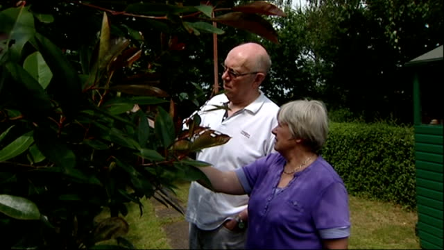 calls for new laws to protect rights of crime victims in court; england: various shots steve beverley and wife and wife pruning roses in garden int... - 正義の天秤点の映像素材/bロール