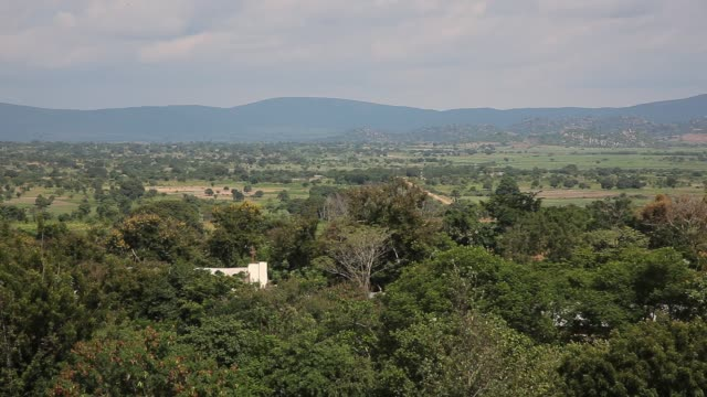 vídeos y material grabado en eventos de stock de calm east african village near mwanza, lake victoria, tanzania - green de golf