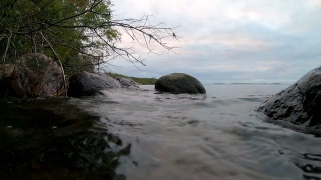 calm lakeshore scenes - lakeshore stock videos & royalty-free footage