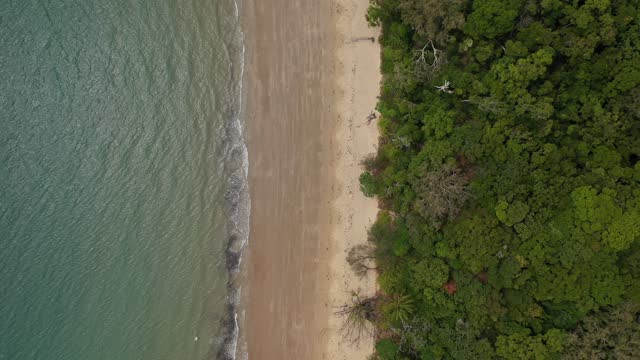 calm sea, coast beach sand, forest, water surface, aerial view directly above - bay of water stock videos & royalty-free footage