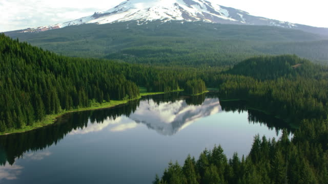 aerial calm surface of a lake in the forest reflecting the beautiful mount hood in the background - inquadratura da un aereo video stock e b–roll