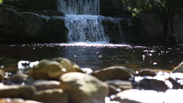calm waters of a mountain stream - purified water stock videos & royalty-free footage
