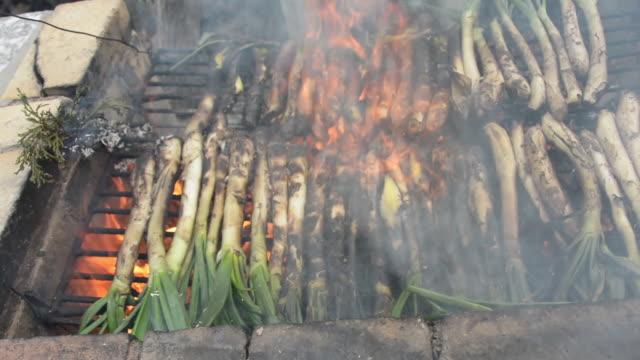 calçotada - sweet onion stock videos and b-roll footage