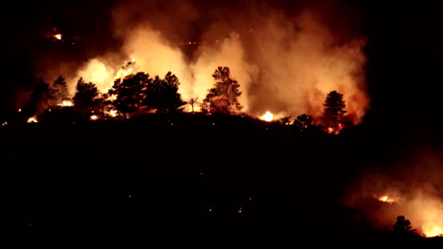 calwood fire flames burn forest north boulder colorado - colorado stock videos & royalty-free footage