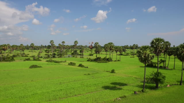 cambodian land aerial view - cambodia stock videos and b-roll footage