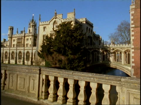 cambridge university, bridge of sighs and magdalene college - ms bridge surrounded by college, stone wall foreground and tree - cambridge university stock videos and b-roll footage