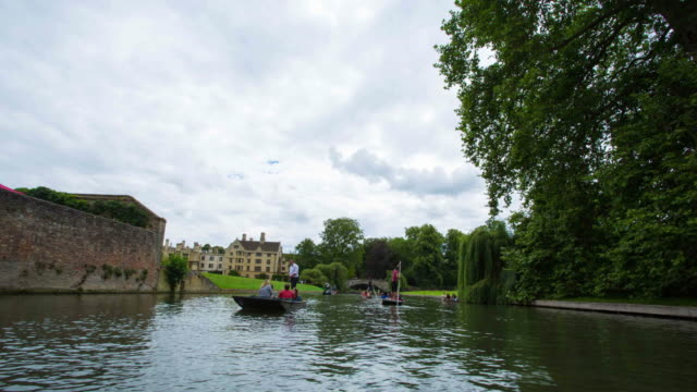 cambridge university, england - cambridge university stock videos and b-roll footage