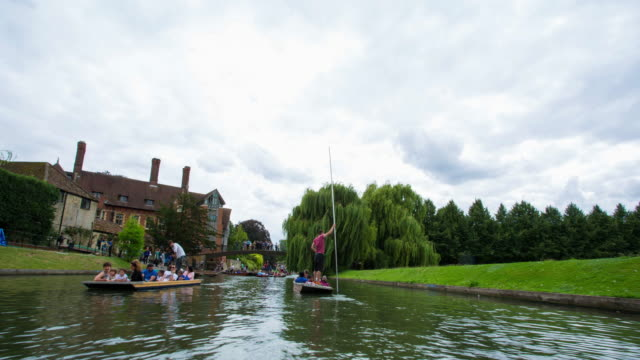 cambridge university tour - cambridge university stock videos and b-roll footage