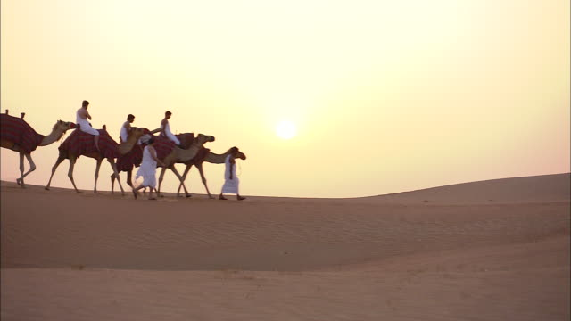 a camel caravan crosses a desert in saudi arabia. - saudi arabia stock videos and b-roll footage
