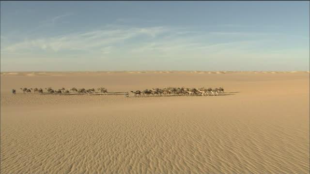 Camel Caravan In Tenere Desert