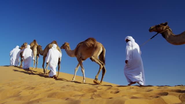 camel caravan train travelling across middle eastern desert - for sale stock videos & royalty-free footage