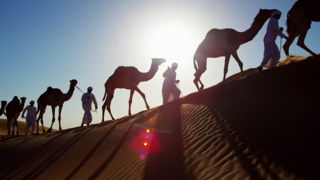 camel caravan train travelling across middle eastern desert - camel stock videos & royalty-free footage