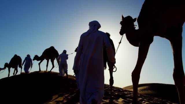 camel caravan train travelling across middle eastern desert - ベドウィン族点の映像素材/bロール