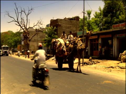 camel draws heavily laden cart along street jaipur - 働く動物点の映像素材/bロール