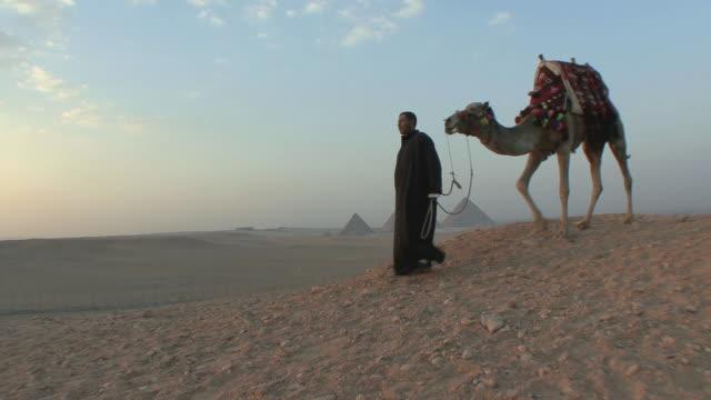 ws camel herder leading camel across desert, giza pyramids in distance, cairo, egypt - egypten bildbanksvideor och videomaterial från bakom kulisserna