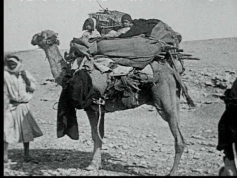 camel loaded w/ supplies + two children being led by bedouin. camel carrying carpets walks through crowd - 1925 stock videos & royalty-free footage