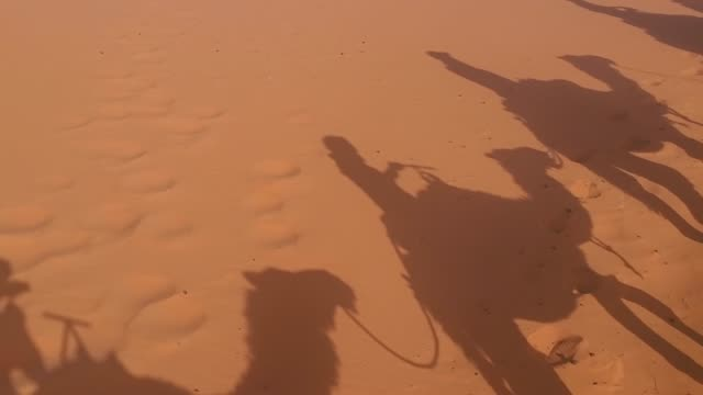 camel ride shadows - camel stock videos and b-roll footage