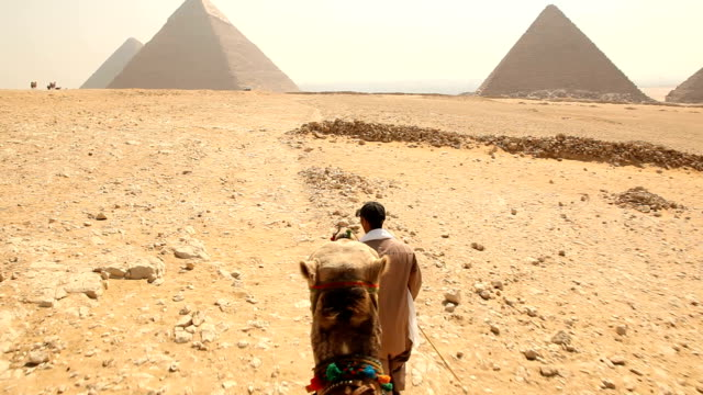 pov camel ride towards giza pyramids/ cairo / egypt - pyramid stock videos and b-roll footage