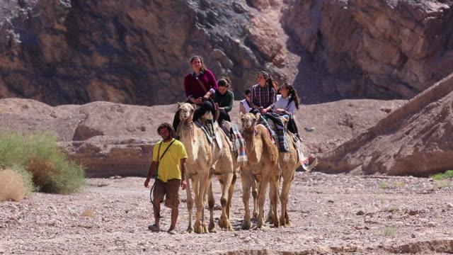 camel riders in the desert near eilat - negev stock videos & royalty-free footage