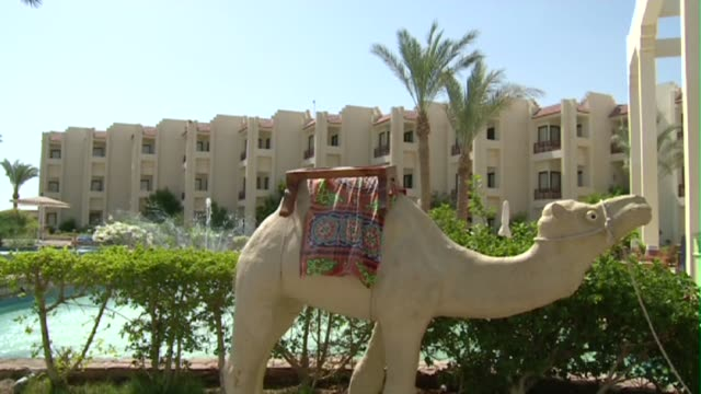 camel sculpture in hurghada - hotel stock videos & royalty-free footage