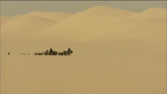 Camel Train In Tenere Desert