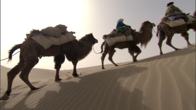 vídeos de stock, filmes e b-roll de camel train walks over dunes, taklamakan, - montar um animal