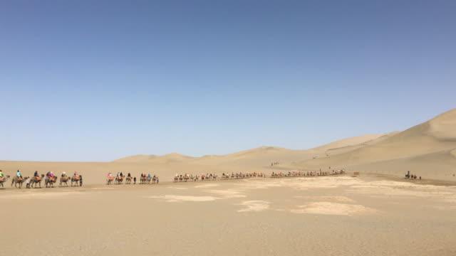 camel trains walking on gobi desert - convoglio video stock e b–roll