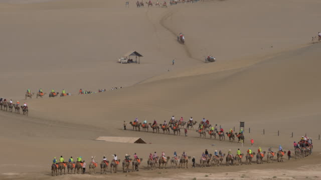 camel trains walking on gobi desert - camel train stock videos & royalty-free footage