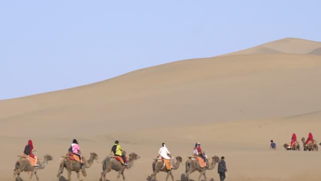 camel trains walking on gobi desert - nomadic people stock videos & royalty-free footage