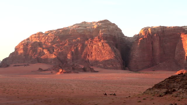 camels, bedouin, wadi rum, valley of the moon - jordan middle east stock videos and b-roll footage